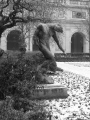 sculpture, palais des beaux arts, lyon