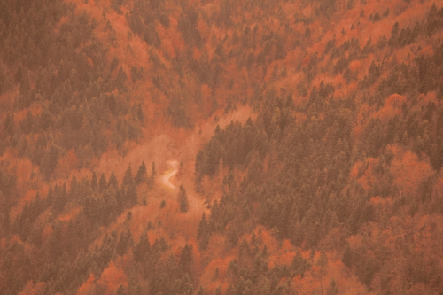 route, montagne, automne