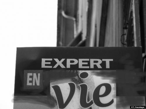 Expertenvie [640x480].JPG